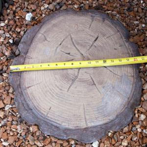 Log Stepper