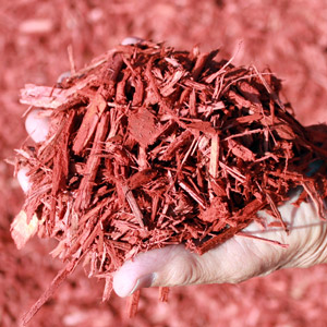 Red Majestic Mulch