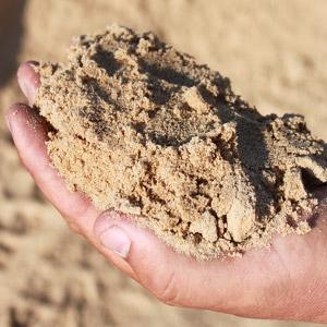 Screened Beach Sand